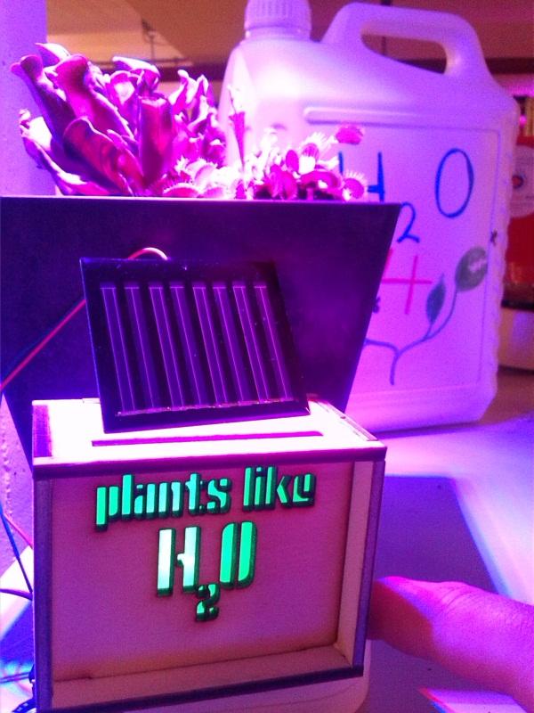 https://revspace.nl/images/c/c4/Plant_blink.jpg
