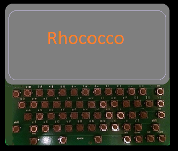 Rhococco concept art.png